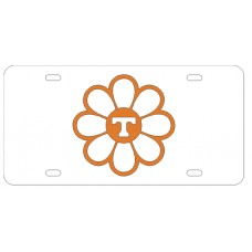 DAISY T - License Plate