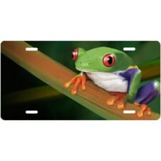 Tree Frog on Stem License Plate