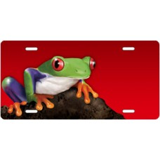 Tree Frog on Stone on Red Offset License Plate