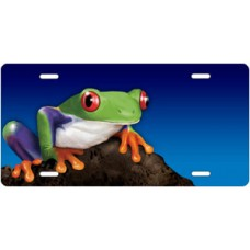 Tree Frog on Stone on Blue Offset License Plate