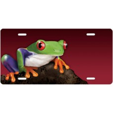 Tree Frog on Stone on Burgundy Offset License Plate