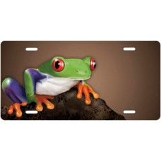 Tree Frog on Stone on Mocha Offset License Plate
