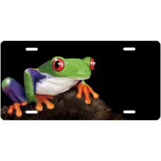 Tree Frog on Stone on Black Offset License Plate