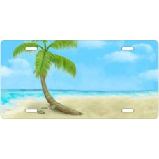 Palm Beach Scenic License Plate
