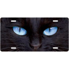 Black Cat with Blue Eyes License Plate