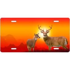 Deer on Orange License Plate