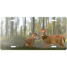 Wilderness Deer License Plate