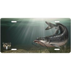 Channel Catfish Offset License Plate