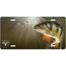 Yellow Perch Offset License Plate