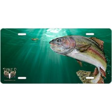 Rainbow Trout Offset License Plate