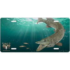 Pike Offset License Plate