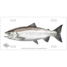 Salmon on White License Plate