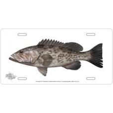Gag Grouper on White License Plate