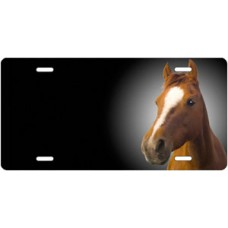 Quarter Horse on Black Offset License Plate