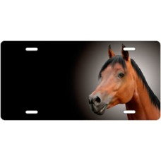 Bay Arabian Horse on Black Offset License Plate