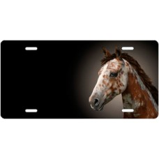 Appaloosa Horse on Black Offset License Plate