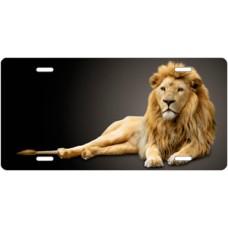 Lion on Black License Plate