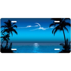 Blue Palms Beach Scenic License Plate