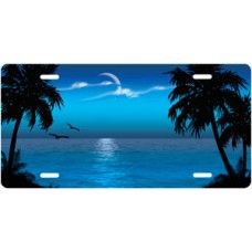 Blue Fluffy Palms Beach Scenic License Plate