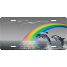 Gray Rainbow Dolphins Scenic License Plate