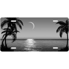Silver Palms Beach Scenic License Plate
