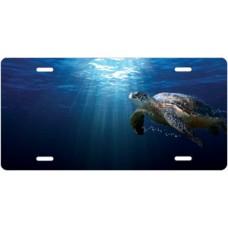 Salty Bones Sea Turtle Offset License Plate