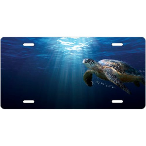Sea Turtle Swimming License Plate