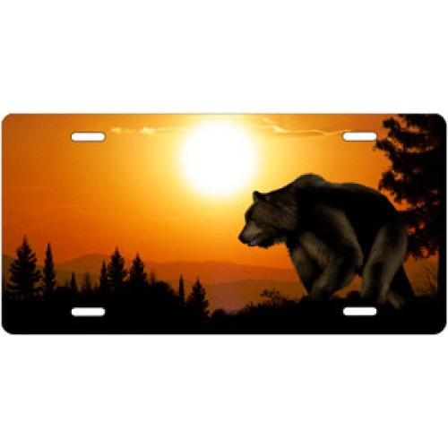 Grizzly Bear License Plate