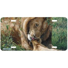 """""""Fathers Day"""" Lion & Baby Cub License Plate"""