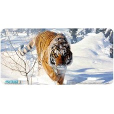 """""""Tyger Tyger"""" Tiger in Snow  Airbrushed License Plates"""