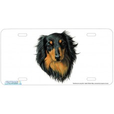 Dachshund Long Hair Airbrushed License Plate