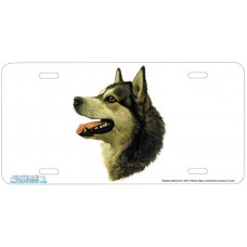 Alaskan Malamute Dog Airbrushed License Plates