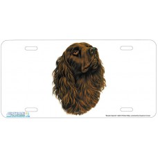 Boykin Spaniel Airbrushed License Plate