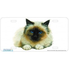 Birman Cat Airbrushed License Plate