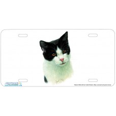 Black & White SH Cat Airbrushed License Plate