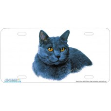 Blue SH Cat Airbrushed License Plate