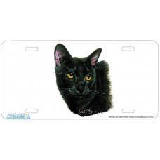 Bombay Cat Airbrushed License Plate