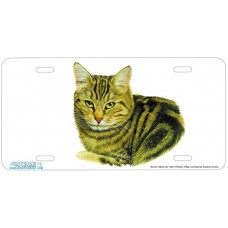Brown Tabby Cat Airbrushed License Plate