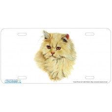 Cream Persian Cat Airbrushed License Plate