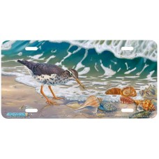 Beach Bums Airbrushed License Plate