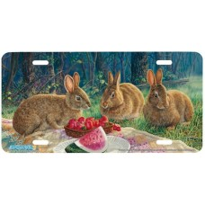 Sunny Bunnies Airbrushed License Plate