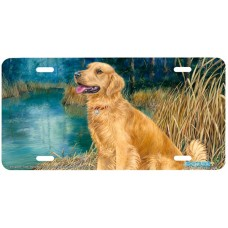 Anticipation Golden Labrador dog Airbrushed License Plate