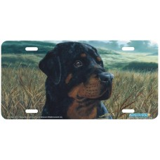 Field Day Rottweiler Dog Airbrushed License Plate