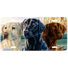 """Lab Trio"" Yellow, Black, & Brown Lab Dogs Airbrushed License Plate"