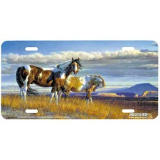 """The Painted Desert"" License Plate"