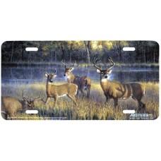 """""""Shadowtime"""" Deer License Plate"""