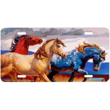 """Carousel III"" Horse Airbrushed License Plate"