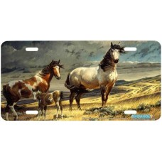 """Windy Ridge"" Horse Airbrushed License Plate"