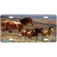 """The Whispering Wind"" Horse Airbrushed License Plate"