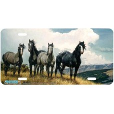 """Amazing Grays IV"" Horse Airbrushed License Plate"
